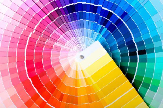 paletadecolor