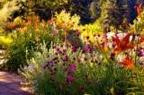 Diseñando el Jardín