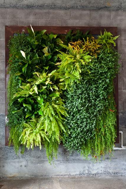 jardinesverticalessustrato1.1