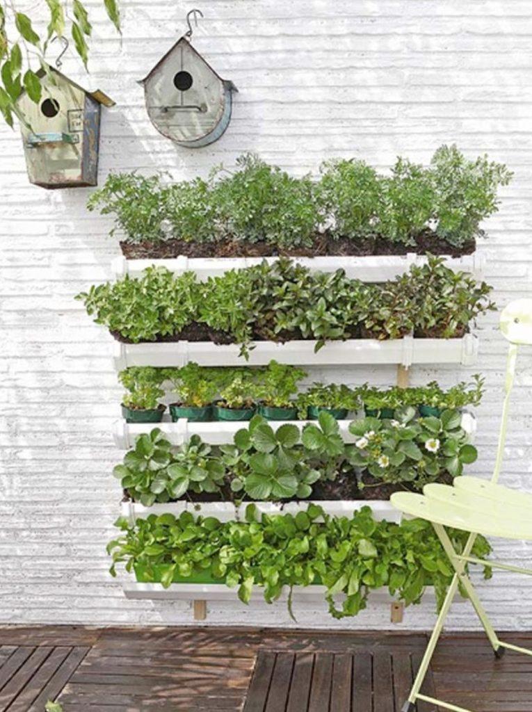 jardinverticalhidropónico