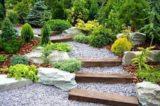 ¿Pensando en renovar el jardín?… ¡Ahora es el momento!