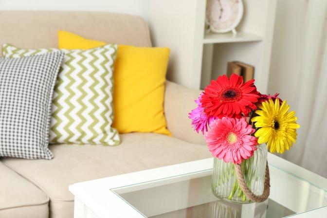 Ideas para purificar el ambiente de tu hogar…Plantas